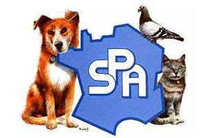 RTEmagicC_logo_spa_02.jpg